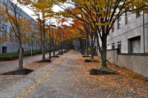 首都大学東京は名前が変?名称変更、名前が変わる可能性も!東京都立大学に戻るのか?